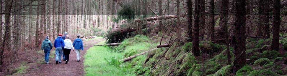 News about Aigas Forest and events in the surrounding area